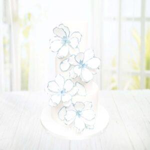 Droomtaart Bruidstaart wit lichtblauwe bloemen