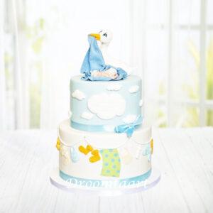 Droomtaart Taart met ooievaar en baby geboorte babyshower gender reveal