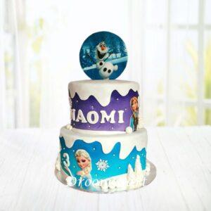 Droomtaart Frozen taart 10
