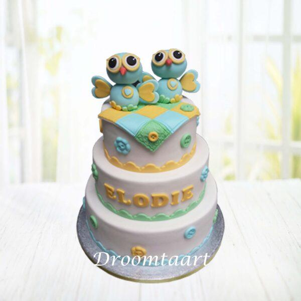 Droomtaart Geboorte taart uiltjes