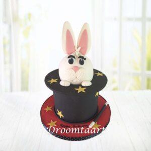 Droomtaart Goochel taart